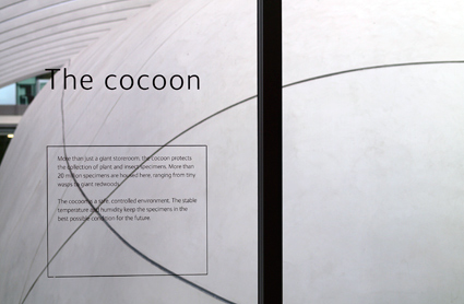 The Cocoon inside the Darwin Centre 2 as part of an exhibition about collections-based research at the Natural History Museum.