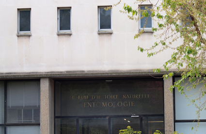 The entrance to the MNHN entomology building on Rue Buffon where the extensive Diptera collection is housed.